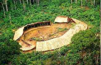 A Yanomami village, notably not in the treetops. Was this an invention of the author, or did the Yanomami move upwards and out of harm's way in the novel's history?